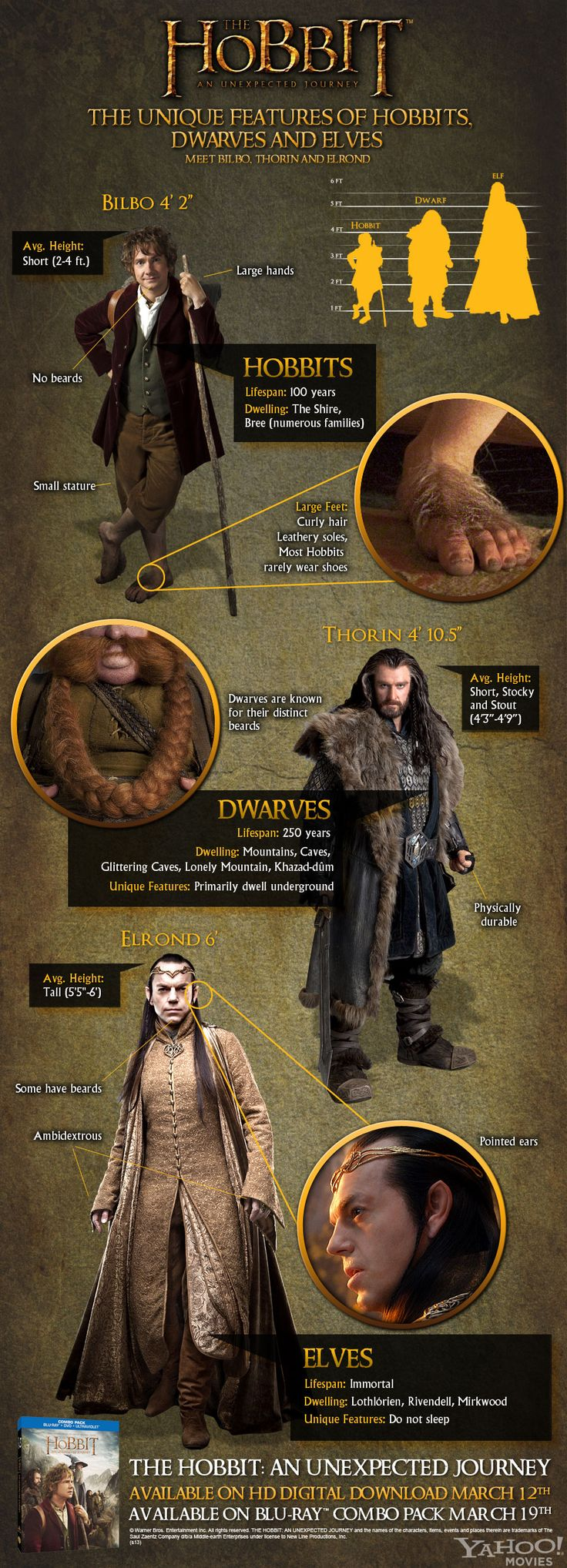 Hobbits Dwarfs and Elves